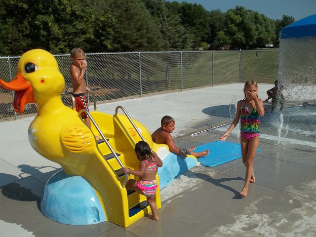 Natural structures aquatic theme pool slides for Duck slide plans